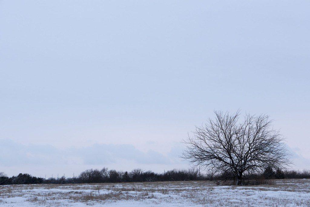 Snow at Sutton Wilderness - Photo by Dennis Spielman