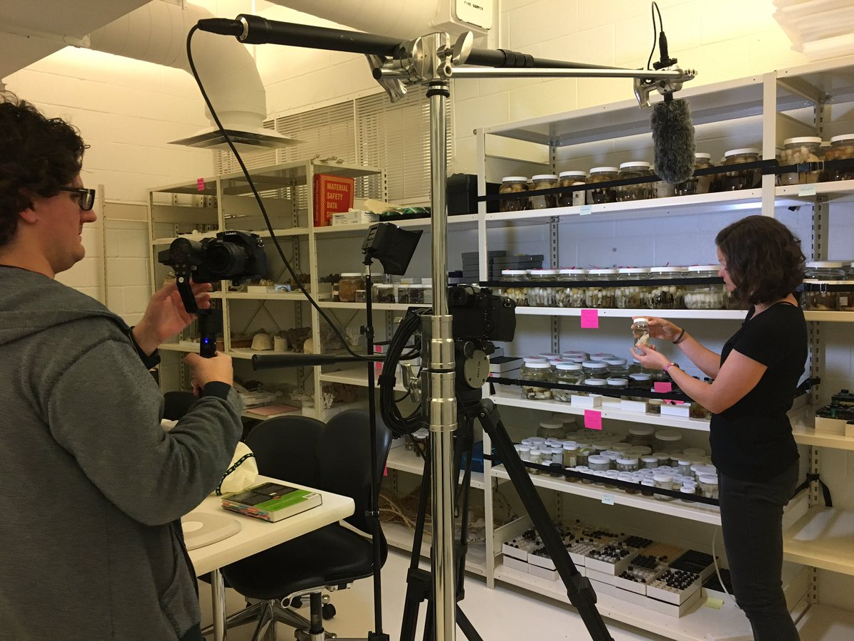 Behind the Scenes of Yes Science with Katrina Menard