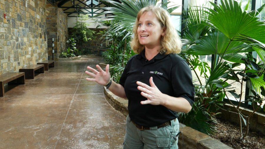 Jennifer D'Agostino