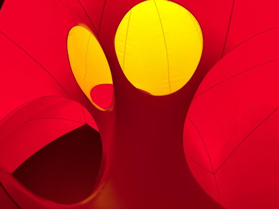 Luminarium Albesila - photo by Dennis Spielman